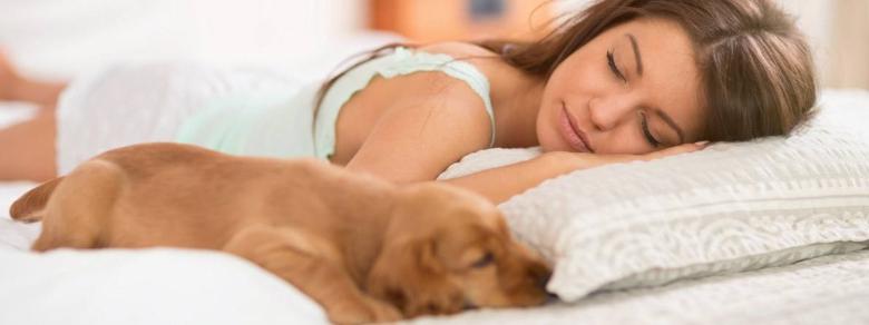 Per fare sonni tranquilli le donne vogliono accanto il loro cane