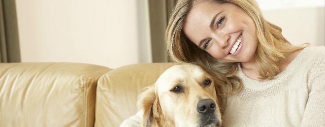 Il cane: la migliore compagnia per i single