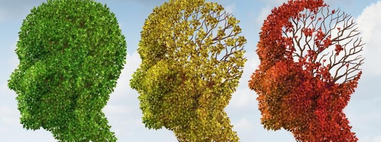 Demenza Senile, Impariamo a Conoscerla e Combatterla in 4 Step