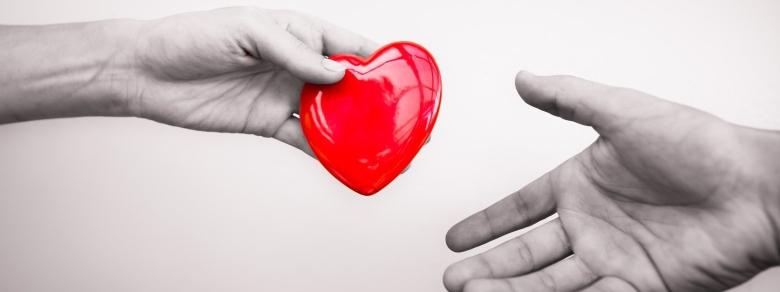 Donazione degli organi, aumenta il consenso tra i 18 e i 29 anni