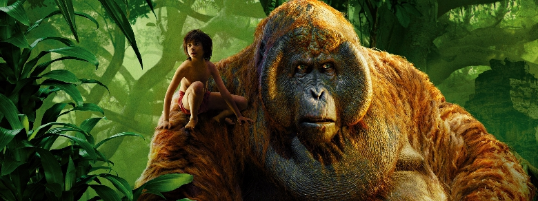 India, bimba cresciuta nella foresta come Mowgli