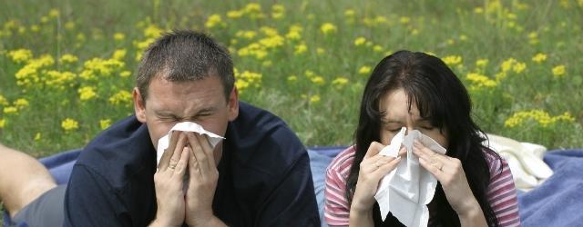 Le allergie possono causare un calo del desiderio?